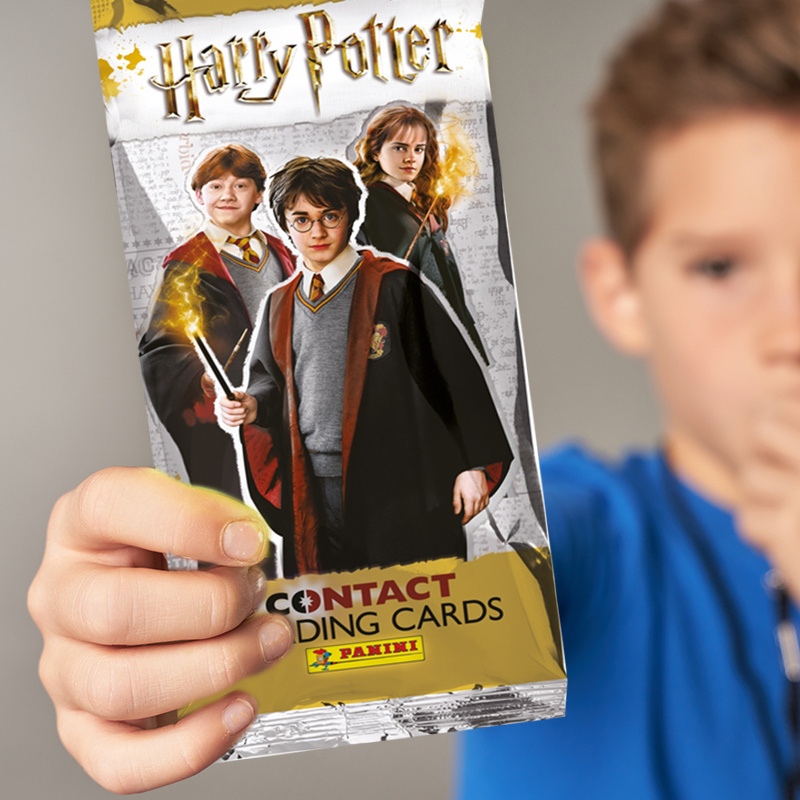Panini Harry Potter Saszetka Karty